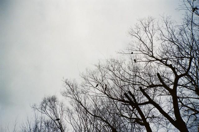 2012.03.02
