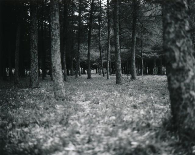 2012.05.12