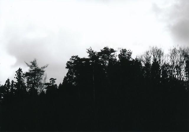 2012.06.08